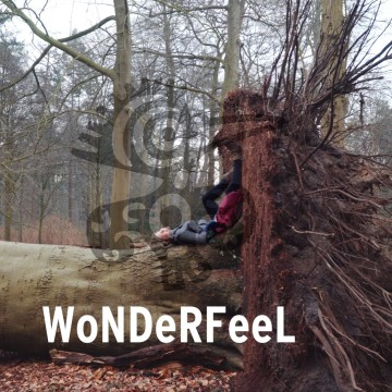 Wonderfeel - Terreininspectie still01